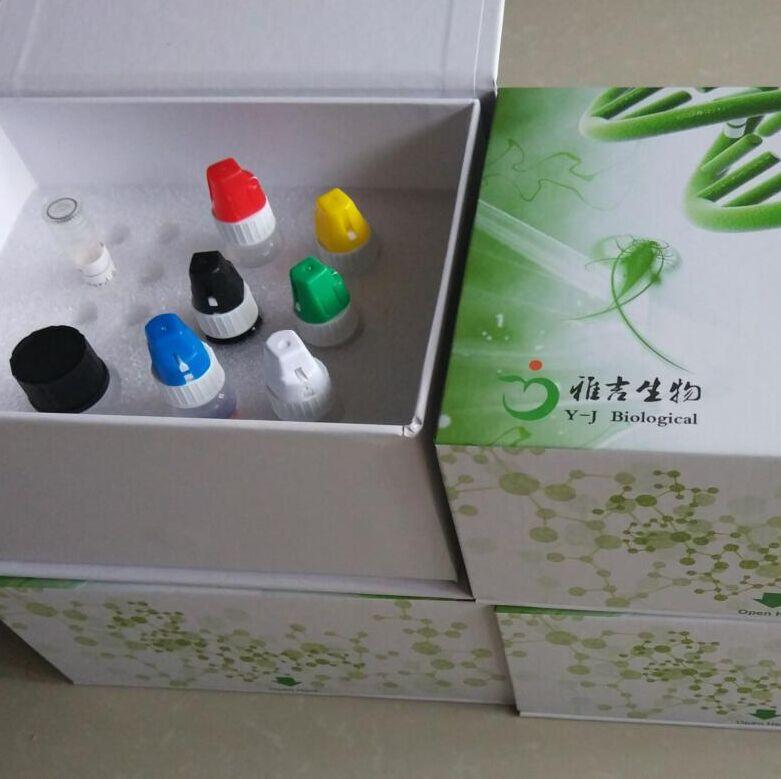 荧光素酶标记试剂盒
